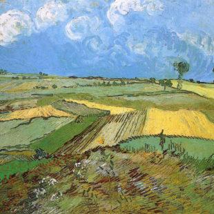 Пшеничные поля в Овере под облачным небом