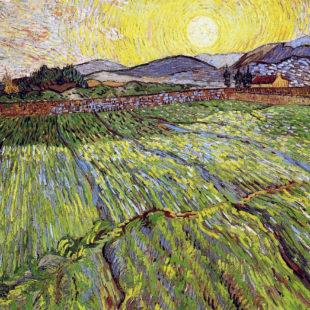 Вспаханное поле с восходящим солнцем
