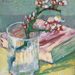Ветка цветущего миндаля в стакане и книга