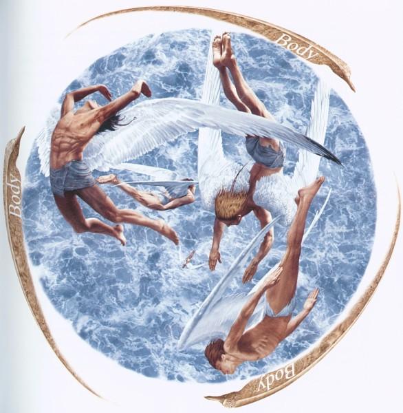 иллюстрации Владислава Ерко, Ричард Бах